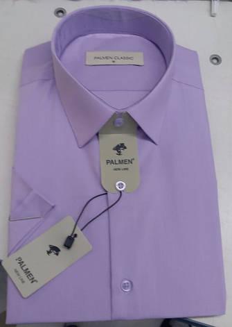 Однотонная рубашка с коротким  рукавом Palmen, фото 2