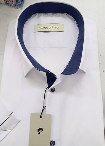Однотоная сорочка з коротким рукавом Palmen на кнопці, фото 2
