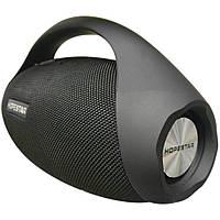 Портативная акустическая Bluetooth колонка Hopestar H31 (Черный)