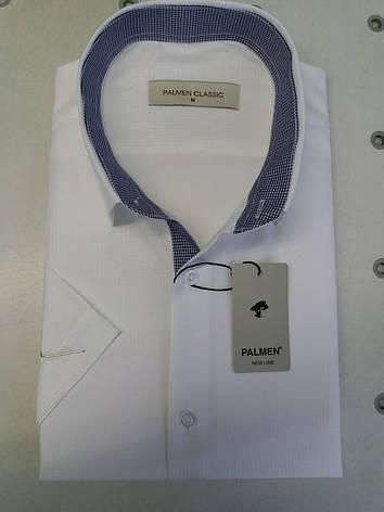 Рубашка с коротким  рукавом Palmen жаккард (пуговица), фото 2