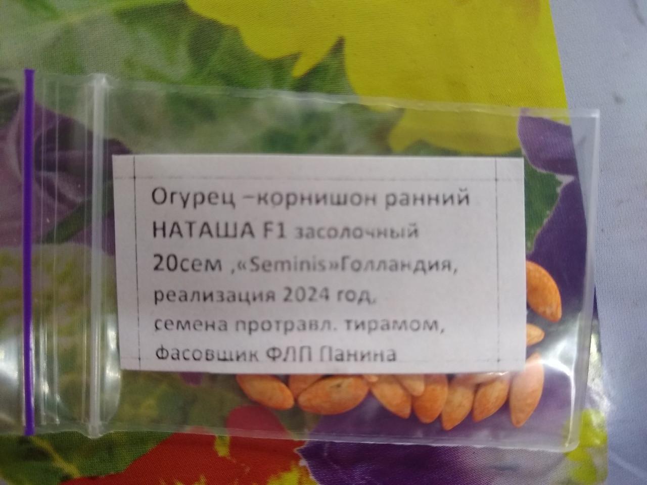Семена Огурец корнишон гибрид ранний Наташа F1 засолочный 20 семян Seminis Голландия