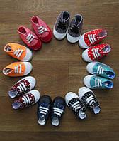 Пинетки - кеды для малышей турецкие,интернет магазин детской одежды,детская одежда Турция