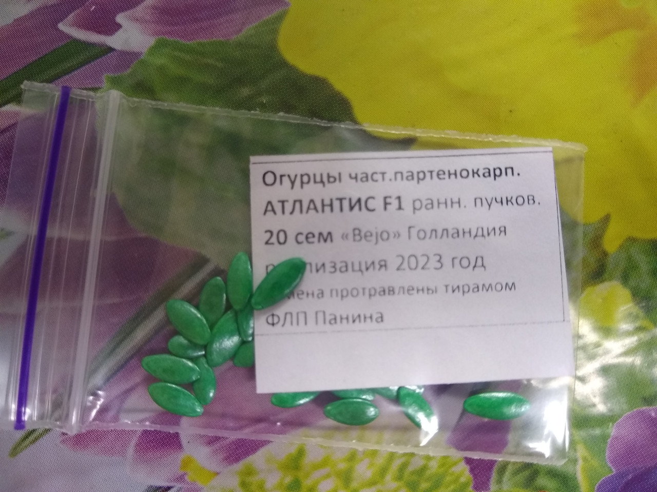 Семена огурца Атлантис F1 ранний гибрид  пучковой 20 семян Bejo Голландия