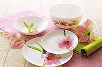 Сервиз столовый 19 предметный Water Color  Luminarc., фото 1