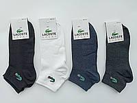 Чоловічі шкарпетки Lacoste