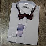 Класична сорочка під краватку-метелик, фото 3