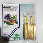Інсекто-акарицид Актофіт 2*4 (Инсекто-акарицид Актофит 2*4), фото 2