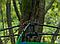 Туристическая палатка автомат  Leomax  2*1,5 метра, 2-х местная, Синяя, фото 4