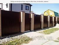 Профнастил ПС10/ПС20 0,45мм 2-хсторонний цвет Словакия, фото 3