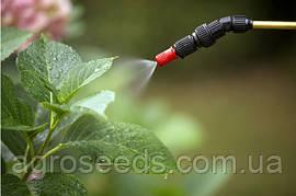 Инсектициды – верный способ избавить растения от паразитов