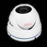Гибридная Антивандальная камера GV-083-GHD-H-DOS20-20 1080Р, фото 3