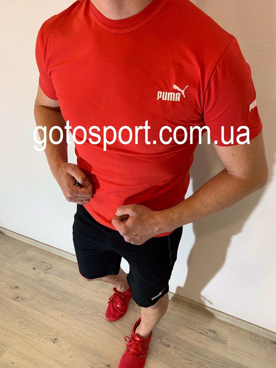 Мужской спортивный костюм (футболка и шорты) Puma Confrontation Red