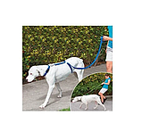 Ошейник для собак Instant Trainer Leash (n-600), фото 3