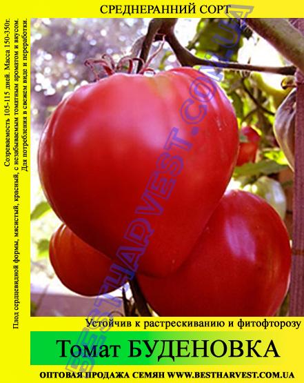 Семена томата Буденовка 100г