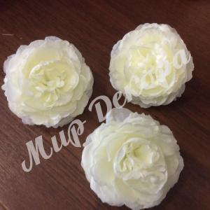 Голова розы пионовидной, белая