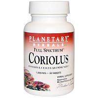 Planetary Herbals, Кориолус полного спектра, 1000 мг, 30 таблеток