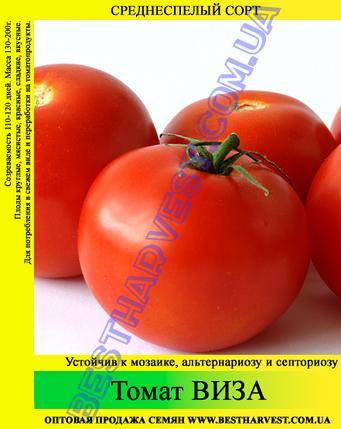 Семена томата Виза 0,5кг, фото 2