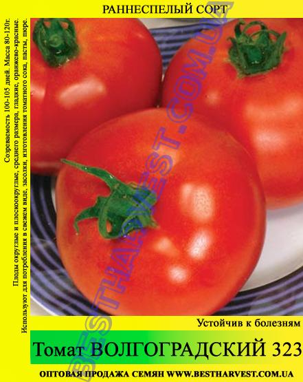 Семена томата Волгоградский 323 0,5кг