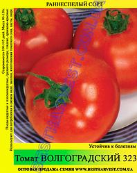 Насіння томату «Волгоградський 323» 100 г