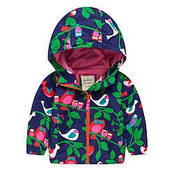 Куртка для девочки демисезонная Птицы Meanbear (100)