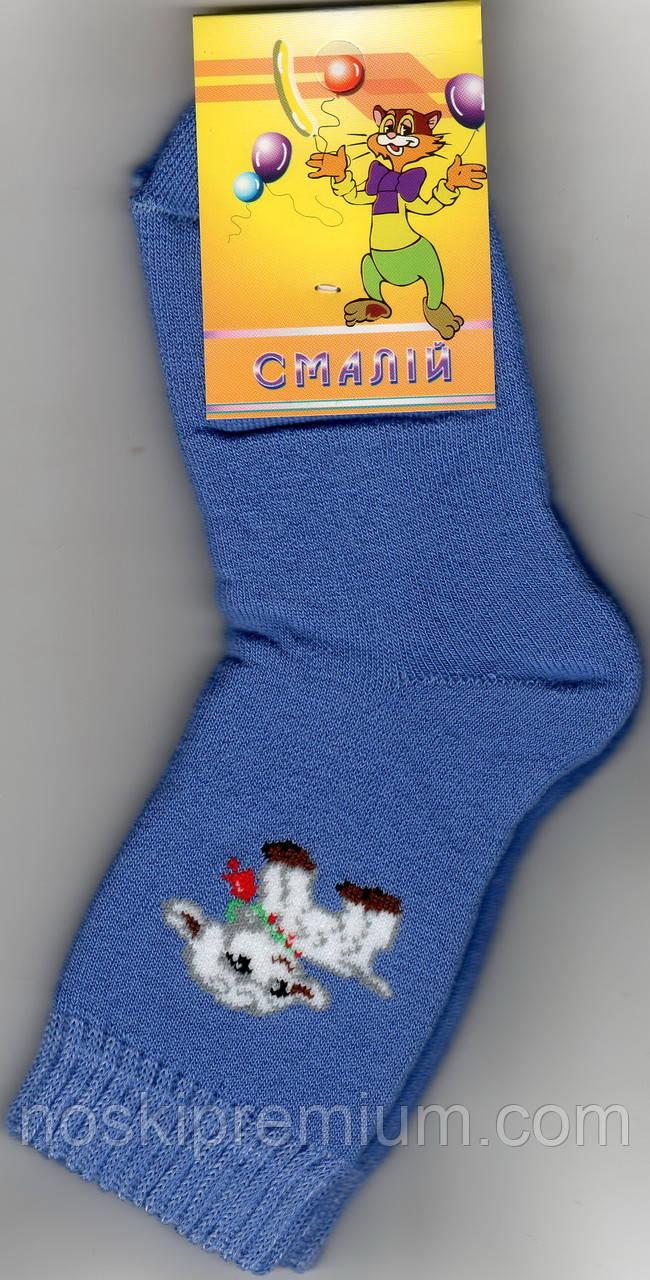 Носки детские х/б махровые Смалий, 18 размер, рисунок 34, 10519