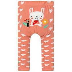 Леггинсы для девочки Кролик Berni Kids (0-2 года)