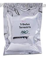 Трибулус Террестрис( 90% сапонинов) Tribulus Terrestris (90% saponins)