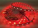 SMD2835 60 Led 14,4 wat красного свечения лента светодиодная, фото 2