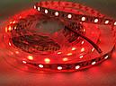 SMD2835 60 Led 14,4 wat красного свечения лента светодиодная, фото 4