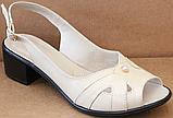 Босоножки на полную ногу на каблуке кожаные от производителя модель БД11, фото 2