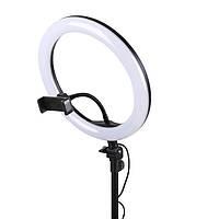 Кольцевая лампа S31 LED 31см с держателем для телефона (селфи кольцо)