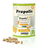 Anibio Propolis  - Укрепление защитных сил организма. 60 капсул