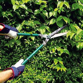 Ножницы для кустарников