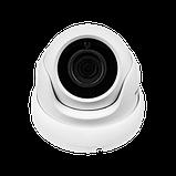 Антивандальная IP камера Green Vision GV-077-IP-E-DOF20-20 POE, фото 2