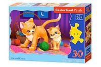 Пазлы Castorland   30шт (03709) 32*23 см (Кошка и котенок)