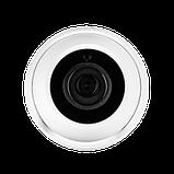 Антивандальная IP камера Green Vision GV-077-IP-E-DOF20-20 POE, фото 3