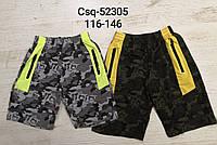 Трикотажные шорты для мальчиков Seagull, 116-146 pp. Артикул: CSQ52305