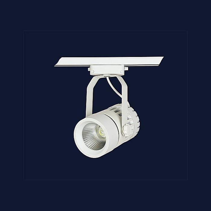 Точечные светильники Levistella 901COB-1740 WH