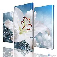 Модульные картины цветы ADFL0185