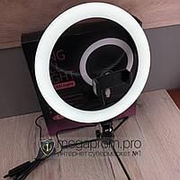 Лампа для селфи кольцевая 26 см для телефона на триноге Ring световое кольцо кольцевой для блогеров макияжа