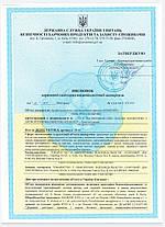 Антисептик для рук Этилсепт 100мл. Сертификат!, фото 2