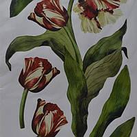 Наклейка, цветы, тюльпаны, декупаж, интерьерная Декор №41, фото 1