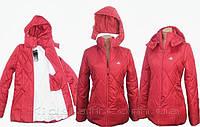 Куртка женская Romb Красная (много цветов)