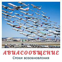 Украинский премьер прояснил сроки возобновления авиасообщения в стране
