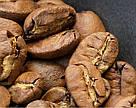 Кофе Марагоджип Никарагуа 500г с кислинкой огромные зерна от фабрики Montana средняя обжарка сегодня!, фото 4