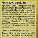 Нимбади Гуггул (Nimbadi Guggulu DS, SDM), 40 таб. по 750 мг, фото 3