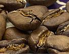 Кофе Марагоджип Гватемала 150г с кислинкой огромные зерна от фабрики Montana средняя обжарка сегодня!, фото 2