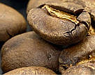 Кофе Марагоджип Гватемала 150г с кислинкой огромные зерна от фабрики Montana средняя обжарка сегодня!, фото 3