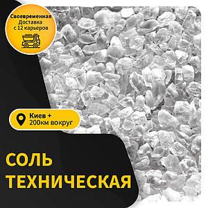Соль техническая оптом в Киеве и Киевской области галит