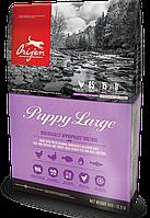 Сухой корм ORIJEN (ОРИДЖЕН) PUPPY LARGE корм для щенков крупных пород 11,4 кг